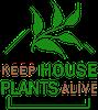 keep house plants alive