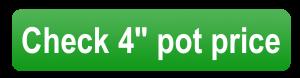 """check 4"""" pot price button"""