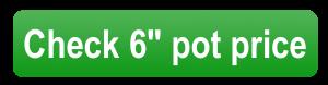 """check 6"""" pot price button"""