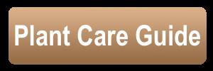 plant care guide button